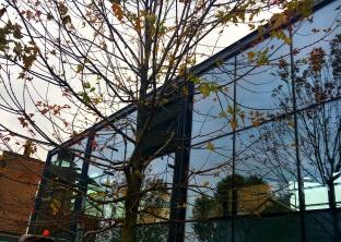 Morrisons Wood Green 8